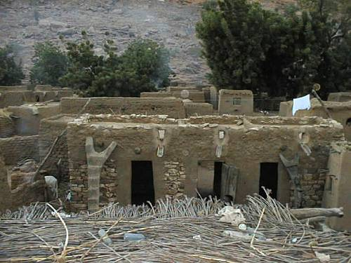 Dogon Country at the base of the Dogon Plateau in Mali. This is a picture of the center of the chief#s compound in the village named Begnimato. The Dogon ladders leading up to the roof of the mud huts are actually tree trunks with notches carved in them for steps.